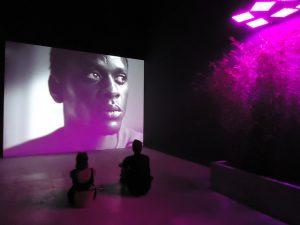 Biennale - Fotografia
