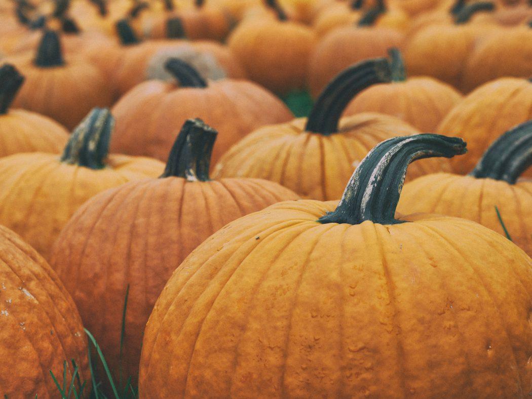 Halloween_Au_Pair